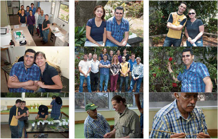 Participants and DAFF staff during the crown rot workshop, October 2012
