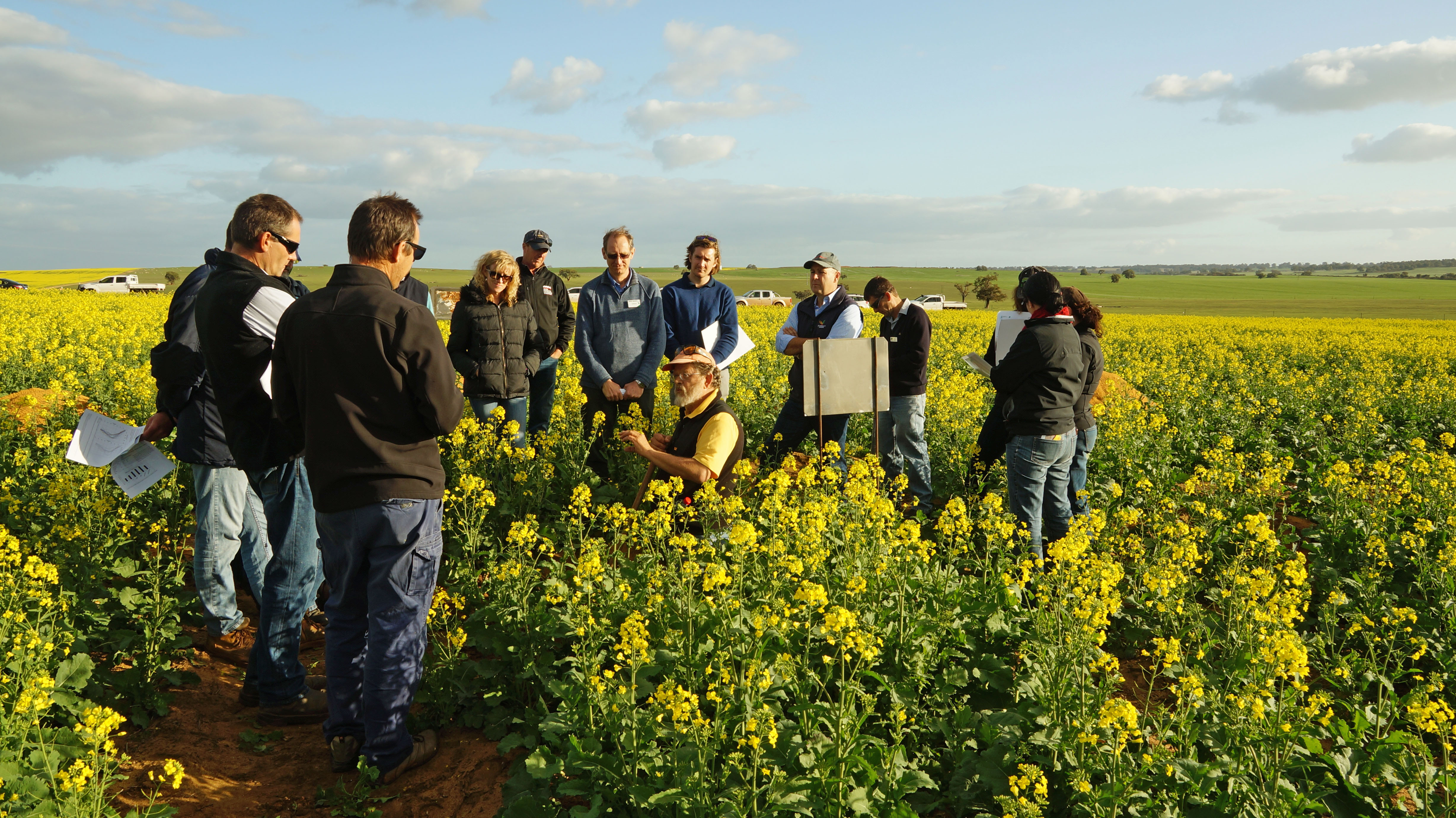Image of tour group at a deep ripping trial site near Moora