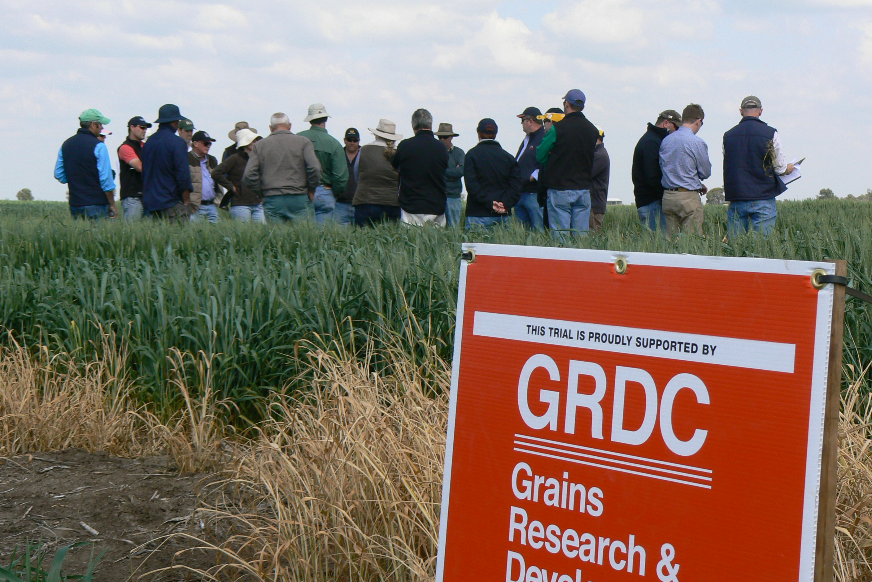 Image of GRDCs spring tour at the eastern grainbelt in Western Australia