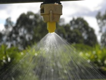 Over head nozzle spraying water