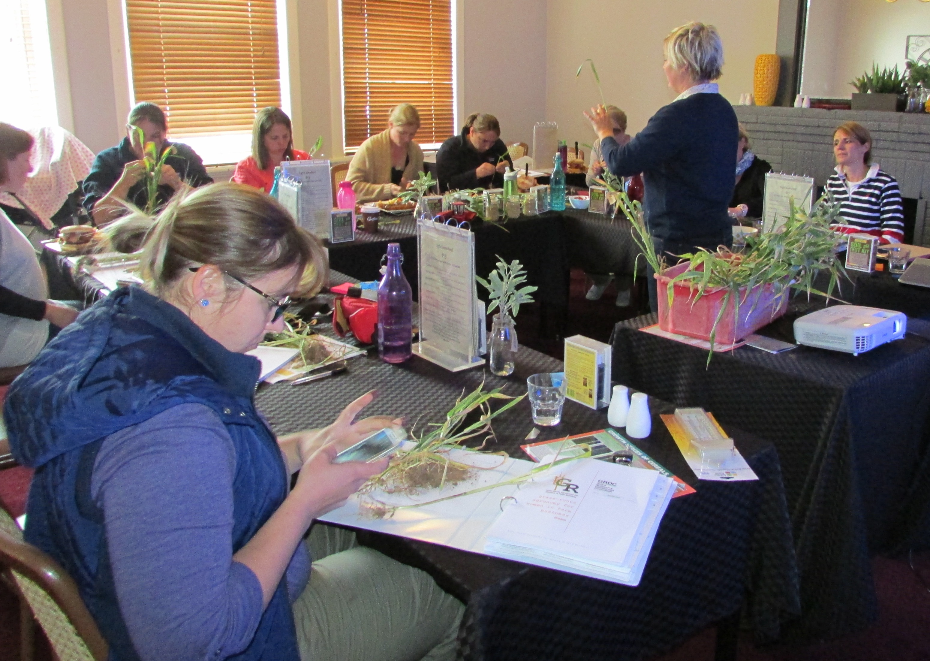 Grass-Roots Agronomy for Women in Farm Business workshop