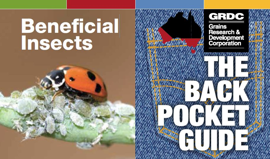 Beneficial Insects The Back Pocket Guide (Southern and Western Regions)