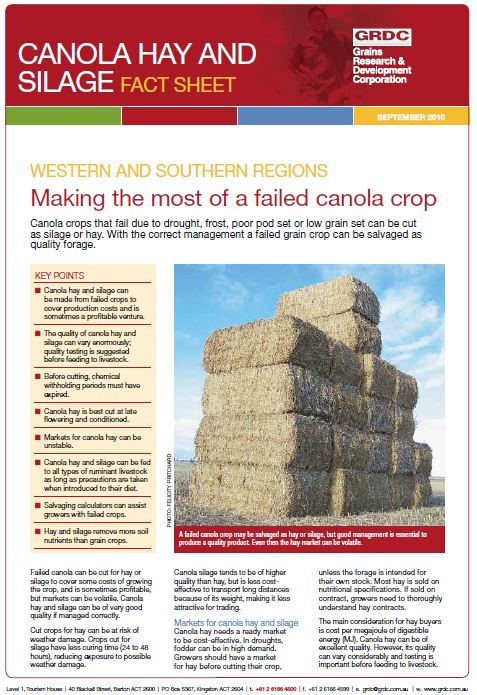 Canola Hay and Silage Fact Sheet