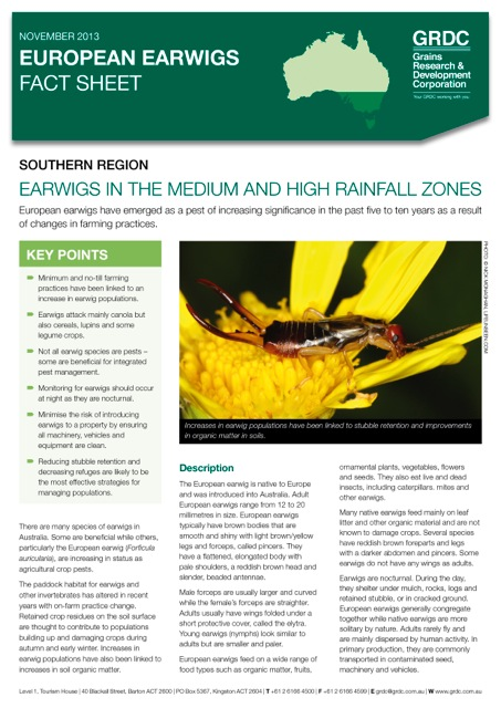 Cover page of the European earwigs fact sheet