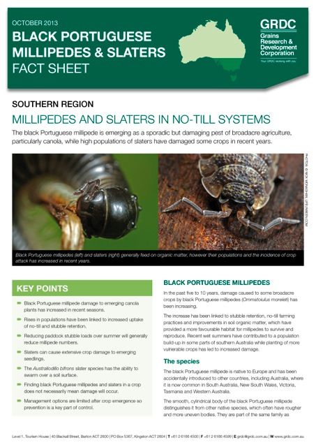 Cover page of the Black Portuguese Millipedes and Slaters Fact Sheet