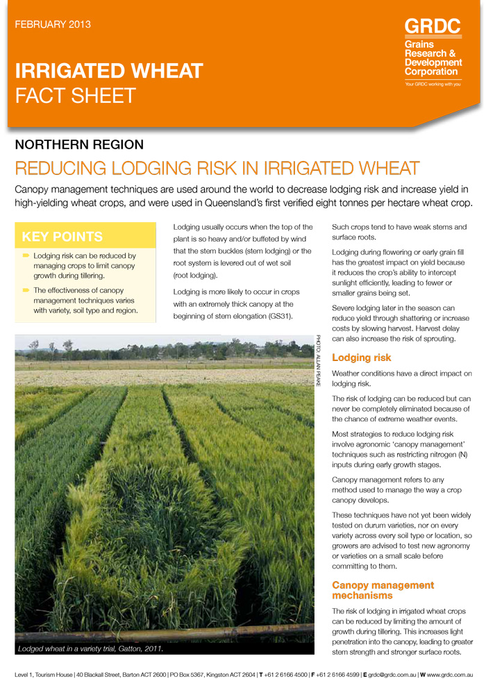 Irrigated Wheat: Reducing lodging risk fact sheet thumbnail image