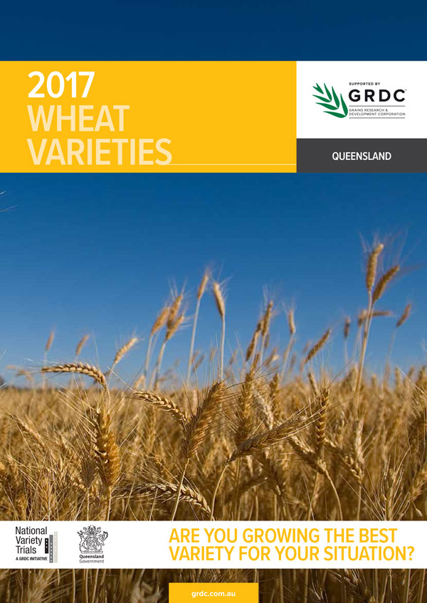 Best Heirloom Wheat Producers