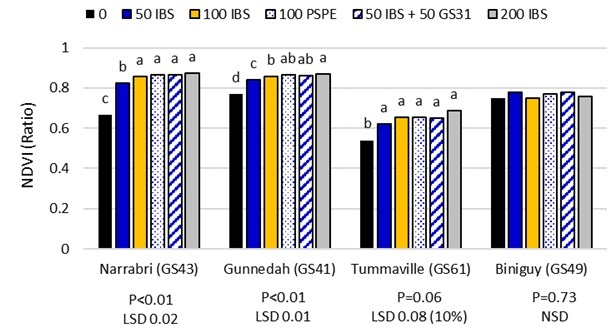 Figure 1. Effect of N rate (kg N/ha), application method and timing on NDVI from urea alone in 2014