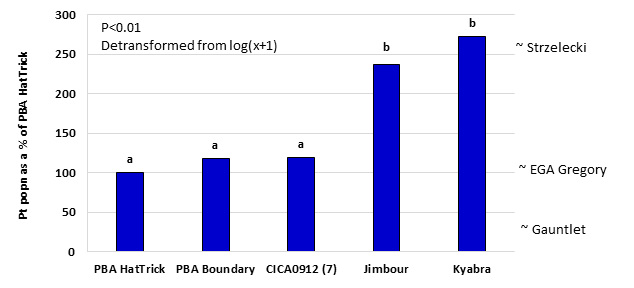 Figure 6. Comparison of Pt population remaining between desi varieties as a % of PBA HatTrick , 2010-2014. All varieties evaluated in all 9 trials except CICA0912 (only 7 trials) The position of the wheat varieties on the RHS of the graph indicate our best current estimate of comparison between these varieties for Pt build-up.  This data has been generated where desi chickpeas and wheat have been grown at the same trial site.