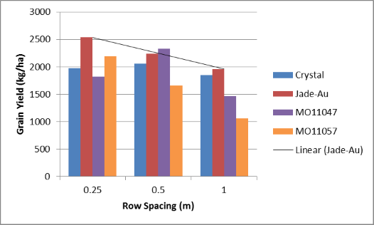 Figure 13. Warra 2014/15 mungbean grain yields variety x row spacing (LSD 5% 704kg)