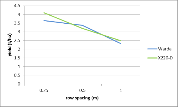 Figure 2. Effect of row spacing on yield of two faba bean varieties, Warra, winter 2014 (LSD 0.0527)