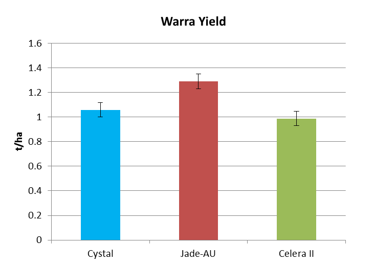 Figure 2. Variety grain yield for all row spacings at Warra (LSD 5% 119.2) and Dalby 13/14 (LSD 5% 101.2)