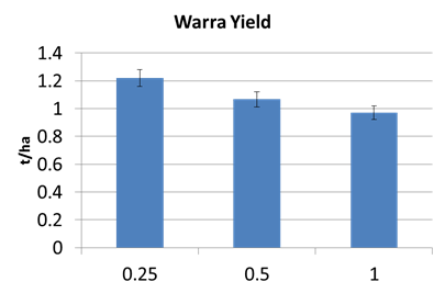 Figure 3. Warra row spacing yields for all varieties 2013/14 (LSD 5% 258.2)