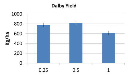 Figure 4. Dalby row spacing yields for all varieties 2013/14 (LSD 5% 81.6)