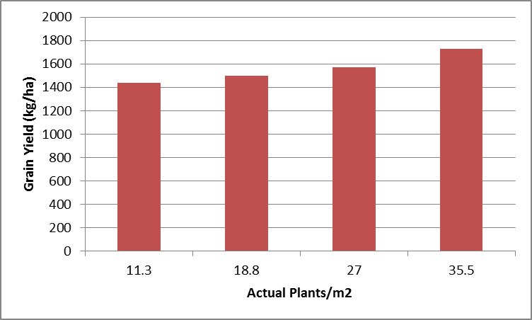Figure 8. Warra 2014/15 plant population yields (LSD 5% 318)