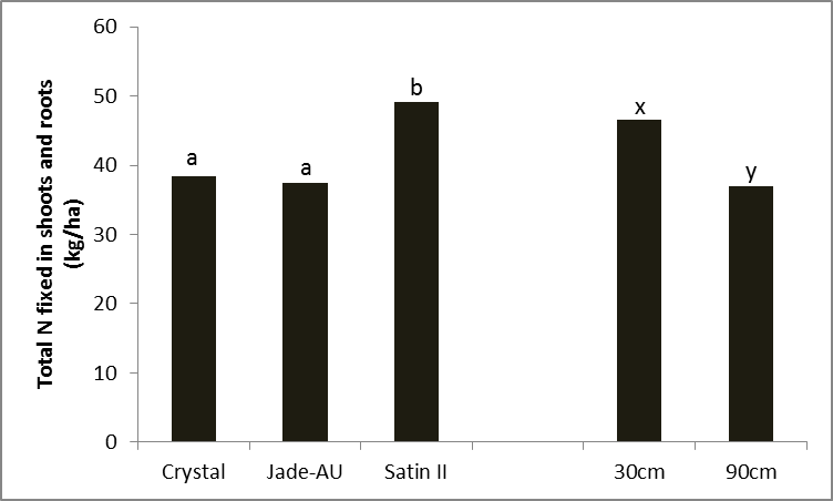 Figure 9. Differences in total shot and root nitrogen by variety (LSD 5% = 7.65) and row spacing (LSD 5% = 6.24), Kingaroy 2012/13