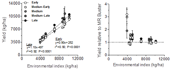Figure 2. Sorghum yields as a function of the environmental index grouped by maturity type (left panel), and treatments yield relative to the yield of MR Buster (hybrid check) (right panel).