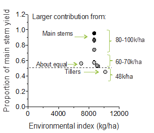 Figure 5. Sorghum yields as a function of the environmental index grouped by plant density relative to the yield of the hybrid check (MR Buster).