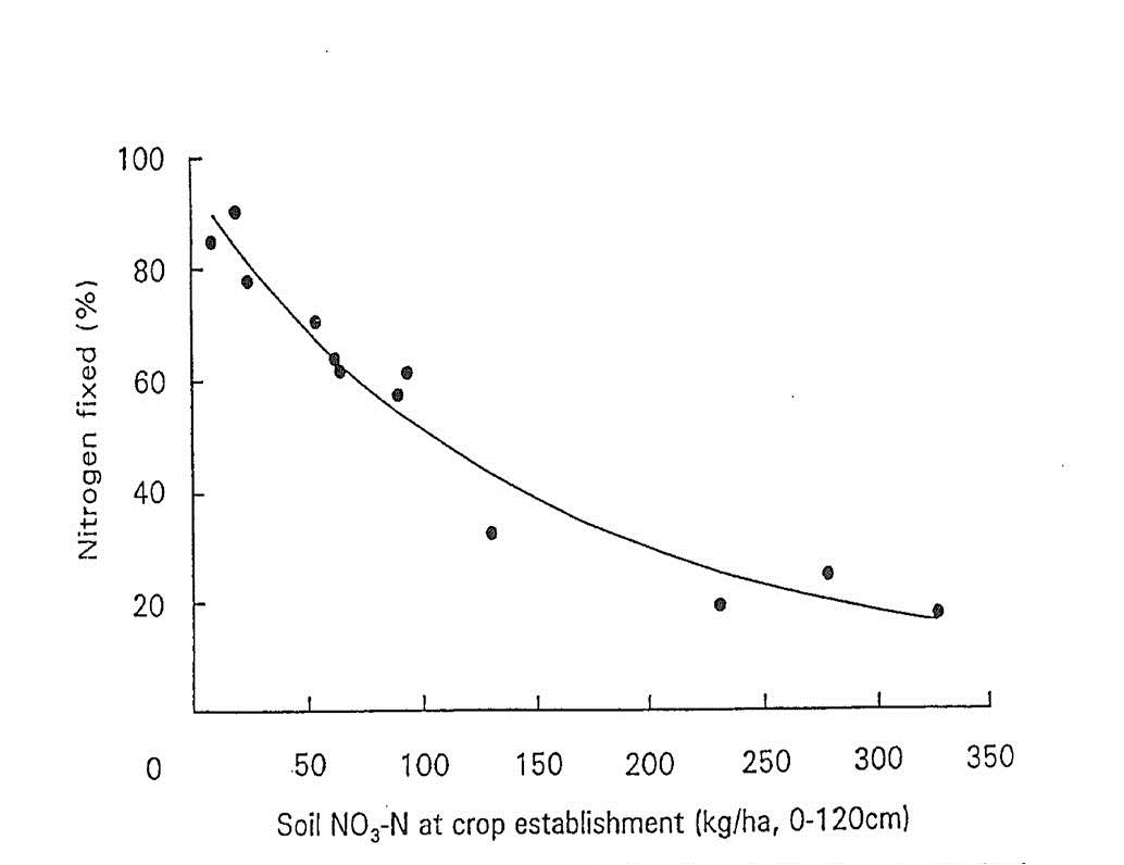 Figure 1. Per cent nitrogen fixed in chickpea (cv. Reselected Tyson) tops 130 days after planting for various levels of soil NO3-N at crop establishment.  For fitted curve, Y = 7.05+88.45e-0.0070X, R2 = 0.95 (from Doughton et al. 1993).