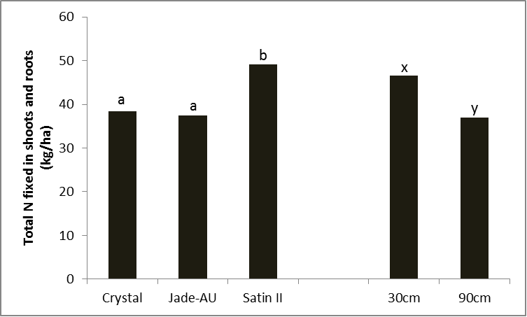 Figure 2. Differences in total shot and root nitrogen by variety (LSD 5% = 7.65) and row spacing (LSD 5% = 6.24), Kingaroy 2012/13