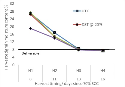 Figure 4. Harvested grain moisture content at four harvest timings in response to various desiccation treatments- Wellington 2015