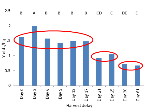 Figure 5. Harvested grain yields in response to delays in direct heading- Wellington 2013