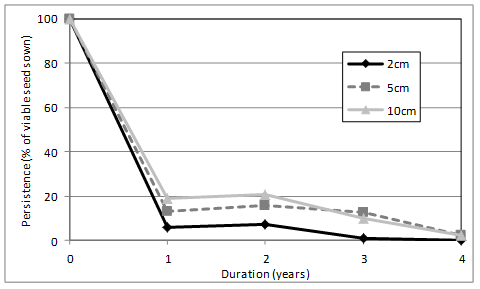 Figure 3. Persistence of flaxleaf fleabane buried at different depths and for different times (years).