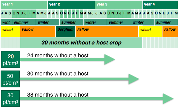 Figure 6. An example of a non-host fallow showing the time required to reduce different starting populations of  root-lesion nematode.