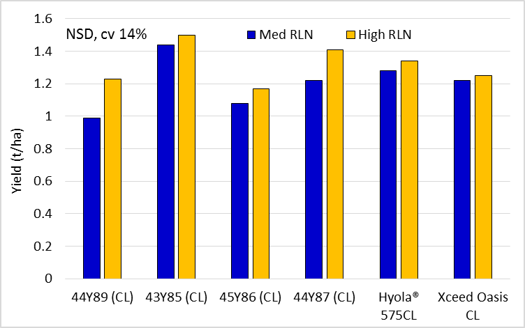 Figure 2.  Brassica yields in the 'med' and 'high' Pt strips (all canola except the B juncea Xceed Oasis CL)