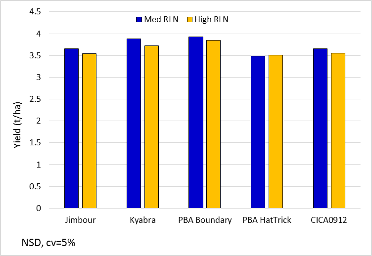 Figure 4. Chickpea yields for key lines in the 'med' and 'high' Pt strips (Kyabra, PBA Boundary and PBA HatTrick are protected under the Plant Breeders Rights Act 1994)