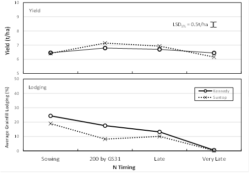 Figure 2. Effect of N strategy on yield and lodging of the quick varieties Suntop and Kennedy at Gatton, 2015