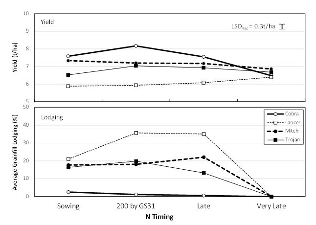 Figure 3. Effect of N strategy on yield and lodging of long season varieties at Gatton, 2015