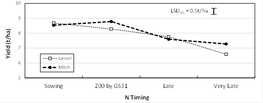 Figure 4. Effect of N strategy on yield of long season varieties at Spring Ridge, 2015