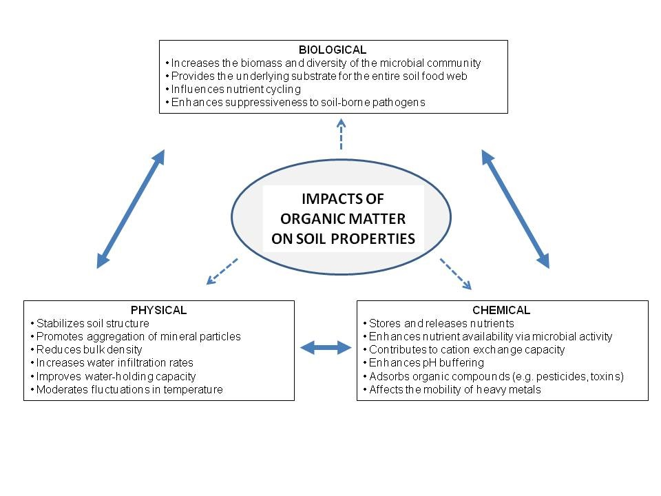 Figure 1. Impacts of soil organic matter on soil properties