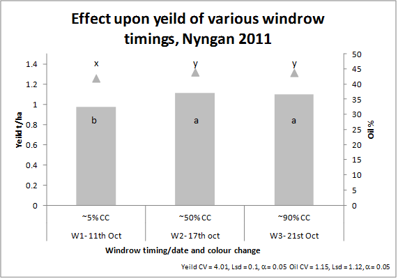 Bar chart showing effect on canola yield for windrow treatment.