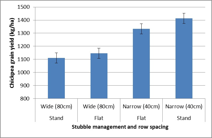 Figure 1. Effect of row spacing and wheat stubble management on chickpea grain yield (kg/ha)
