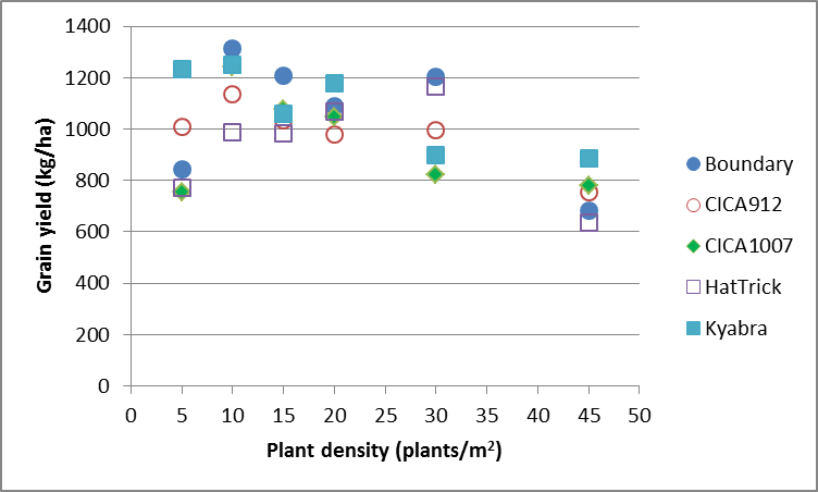 Figure 2. Effect of Chickpea variety x density on grain yield (kg/ha) at Rowena for 2015