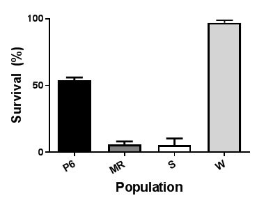 Graph showing survival (%) ± SE (n = 2) in pot cultured plants assessed 15 days after 100 g pyroxasulfone per ha