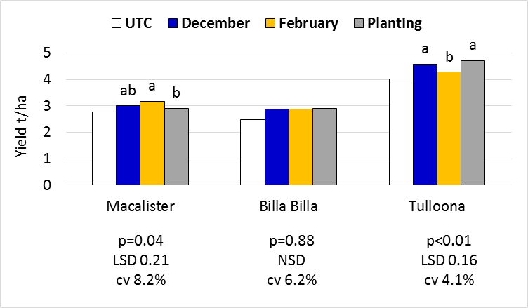 Figure 6. Suntop yield responses to Timing of Application. All treatments incorporated and applied at three rates.