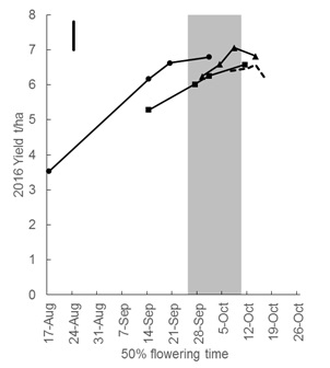 Figure 2. The yield and flowering dates of four cultivars sown on four times of sowing (14 April, 26 April, 6 May, and 15 May) in the 2016 growing season