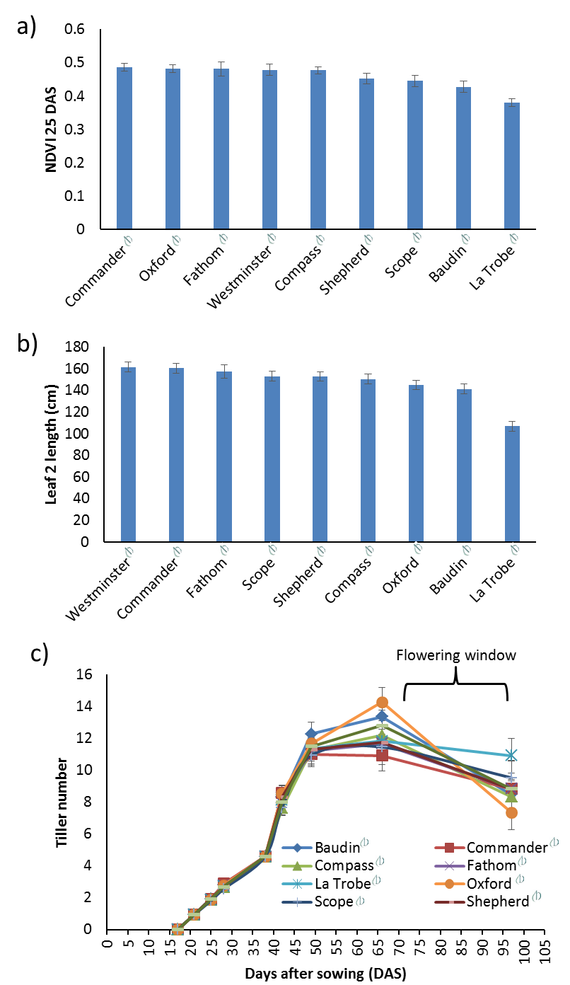 Figure 3. Dissection of early vigour traits in barley varieties grown at Warwick in 2016, including: a) NDVI at 25 days after sowing (DAS), b) length of the second leaf, and c) development of tillers approaching anthesis. The best linear unbiased predictor (BLUP) for each variety is presented and error bars display the standard error.
