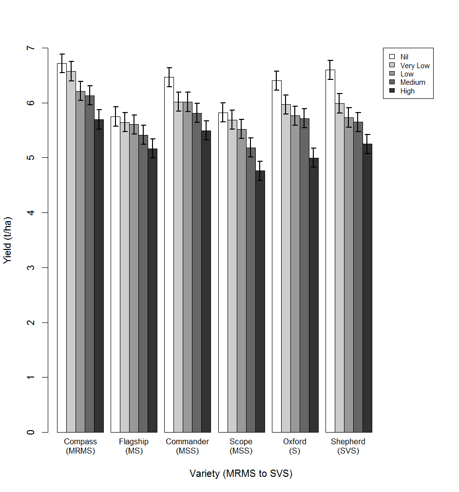 Figure 3. Comparative yields of 6 barley varieties with differing resistance categories under epidemics of spot form net blotch in 2015.