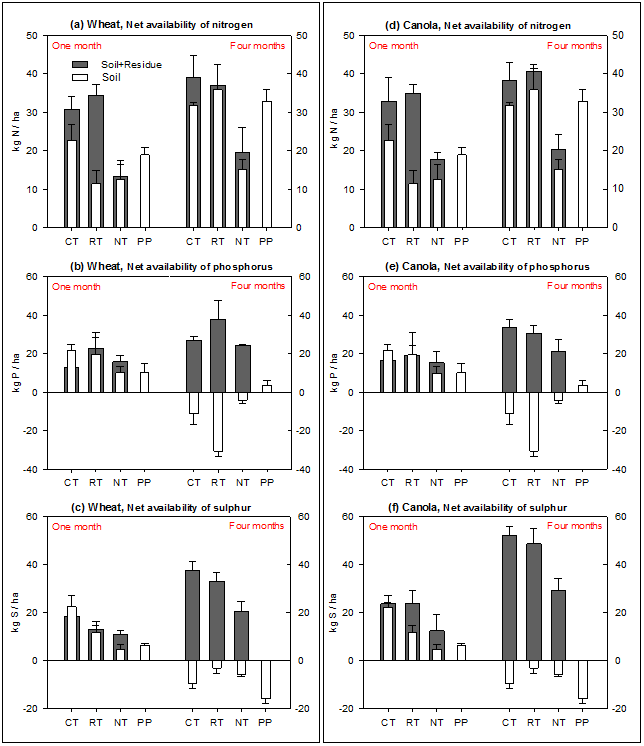 Figure 3. Impact of tillage practices at the Condobolin site (NSW) on net availability of nitrogen (a, d), phosphorus (b, e) and sulphur (c, f) released from soil only, and soil plus added wheat (left panel) and canola (right panel) residues over one month and four months of laboratory incubation. See expanded abbreviation of treatments (CT, RT, NT and PP) in the methodology section for the Condobolin site. Least significant differences at P ≤ 0.05 were LSD0.05 = 11.3, 16.9 and 11.8 for the net availability of nitrogen, phosphorus and sulphur, respectively, over one month; and LSD0.05 = 13.7, 14.2 and 11.5 for the net availability of nitrogen, phosphorus and sulphur, respectively, over four months in the red soil.