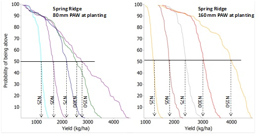 Both Spring Ridge sites with a 80mm and 160mm PAW at planting show an increase in yield as the nitrogen application increases from N25 to N150. Text description follows.