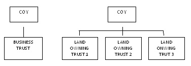Figure 3. Example of business ownership structure.