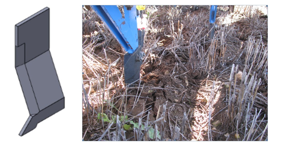 Figure 2. Bent leg furrow opener (left) with offset soil disturbance pattern in the field (right).