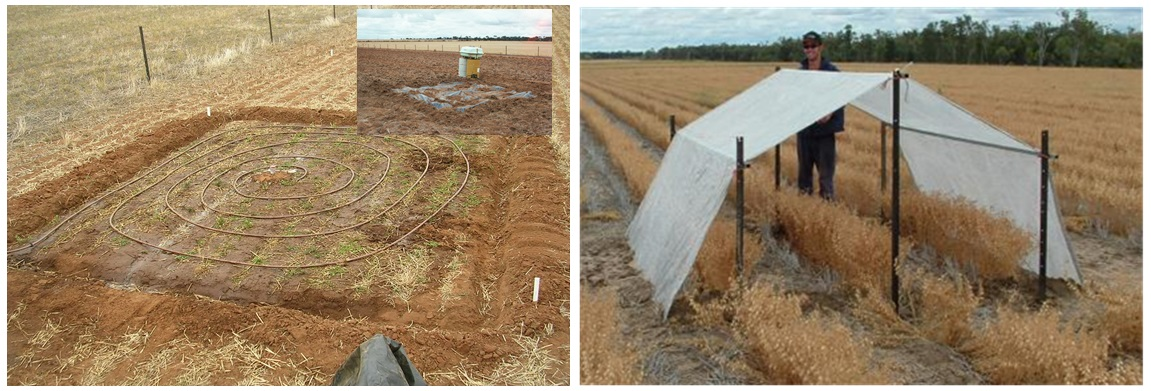 Figure 1. Wetting up for DUL determination and rainout shelter used for CLL determination.