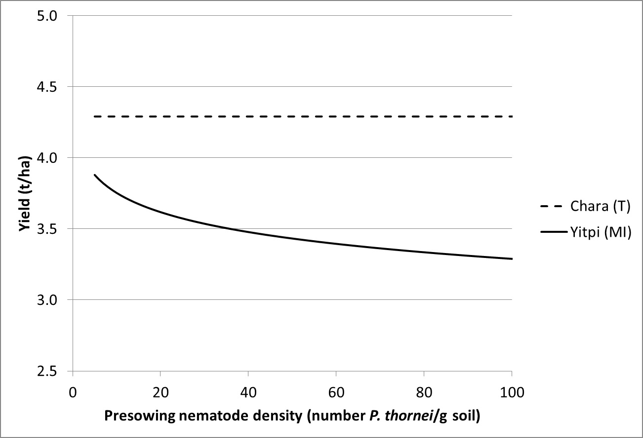 Figure 2. Relationship between grain yield and pre-sowing nematode densities (Pratylenchus thornei) in a tolerant (CharaA) and moderately intolerant (YitpiA) wheat cultivar at Banyena in 2011.
