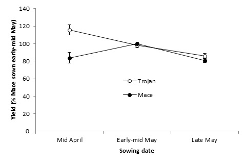 Figure 3. Mean yield performance (Minnipa, Cummins, Port Germein, Hart, Tarlee) of TrojanA and MaceA at different times of sowing relative to MaceA sown in its optimal window of early-mid May.