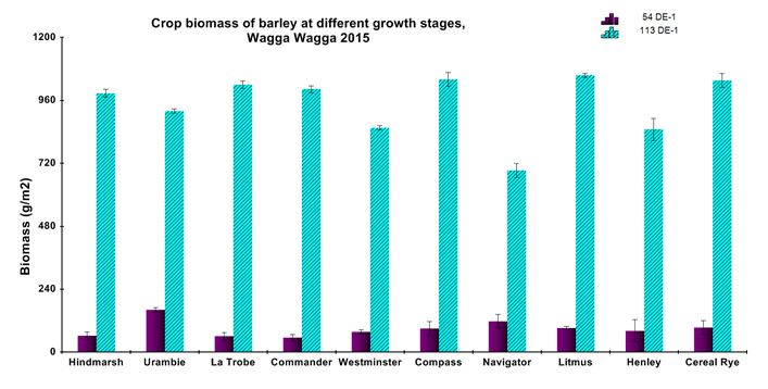 Figure 6: Comparison of early to late crop biomass of barley.